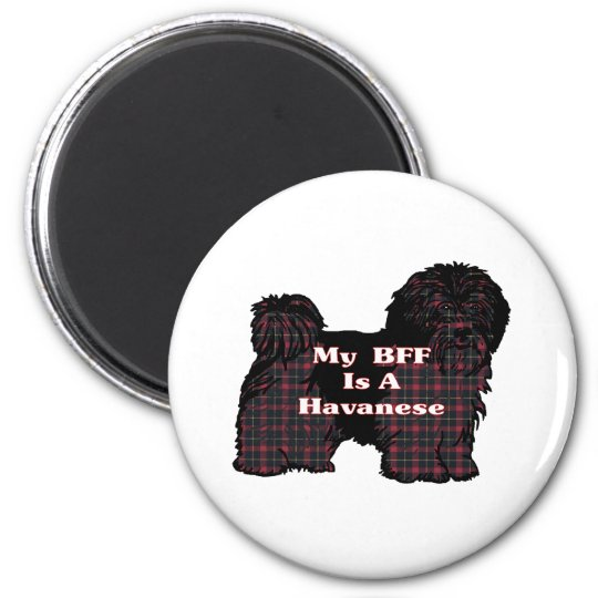 HAVANESE BFF Gifts Magnet