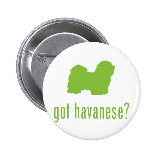 Havanese Pin