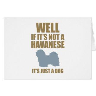 Havanese Card