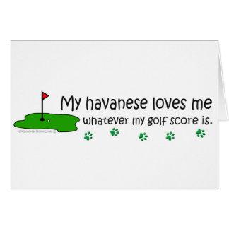 Havanese Cards
