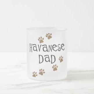 Havanese Dad 10 Oz Frosted Glass Coffee Mug