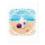 Havanese disfruta de un día en la playa postales