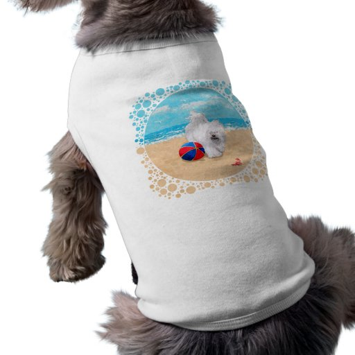 Havanese disfruta de un día en la playa camisa de perro