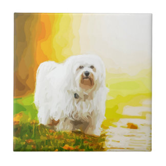 Havanese Dog Bichon Portrait Ceramic Tile