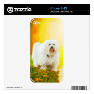 Havanese Dog Bichon Portrait Decal For The iPhone 4S