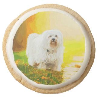 Havanese Dog Bichon Portrait Painting Round Shortbread Cookie