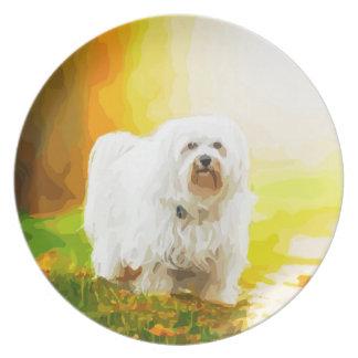 Havanese Dog Bichon Portrait Plate