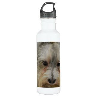 Havanese Dog Breed 24oz Water Bottle