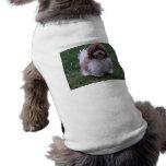 Havanese Doggie Wear Dog Tshirt