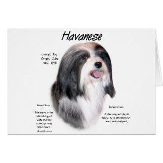 Havanese History Design Card