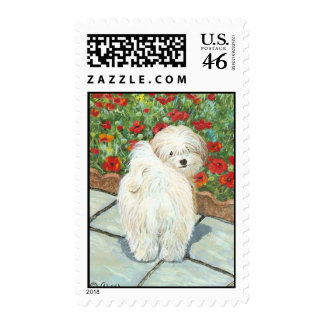 Havanese in the Poppies Art Postage Stamp