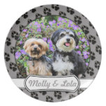 Havanese - Lola y Yorkie - Molly Platos Para Fiestas