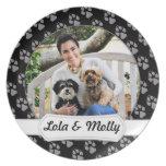 Havanese - Lola y Yorkie - Molly Plato De Comida