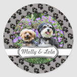 Havanese - Lola & Yorkie - Molly Sticker