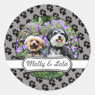 Havanese - Lola Yorkie - Molly Sticker