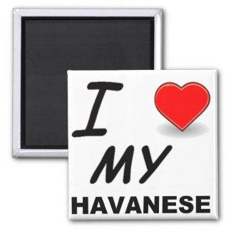 havanese love 2 inch square magnet
