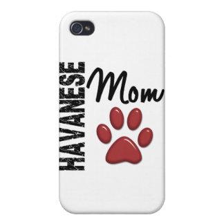 Havanese Mom 2 iPhone 4 Cover