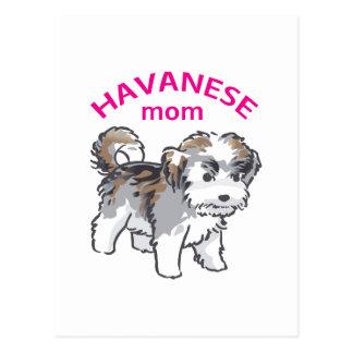 Havanese Mom Postcard