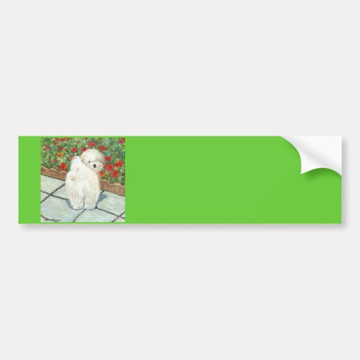 Havanese n Poppies Art Print Gifts & Cards Bumper Sticker