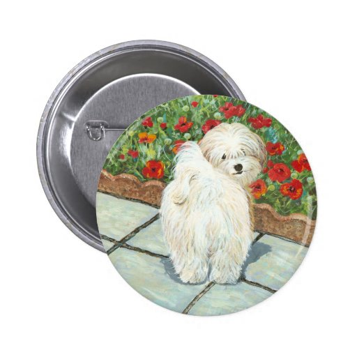 Havanese n Poppies Art Print Gifts & Cards Pinback Buttons