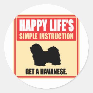 Havanese Etiquetas