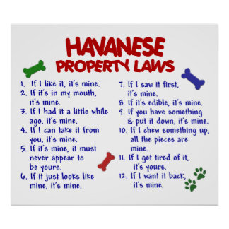 HAVANESE PL2 POSTERS