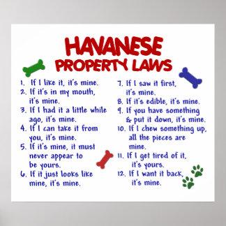 HAVANESE PL2 POSTER