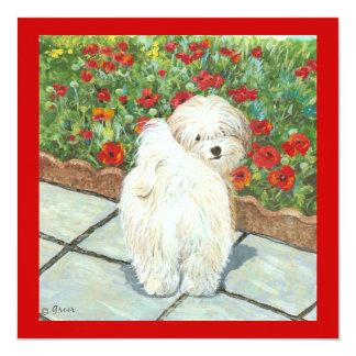 "Havanese Poppies Invitation Card Art Print 5.25"" Square Invitation Card"