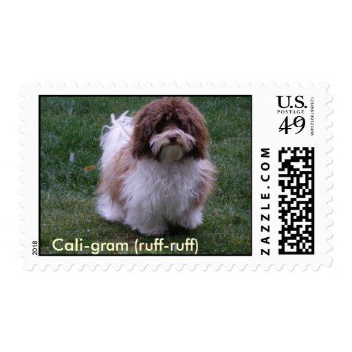 Havanese Postage Stamps