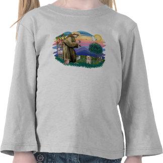 Havanese Pup Tee Shirt