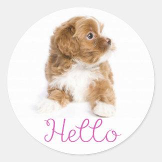 Havanese Puppy Dog Hello Stickers Seal
