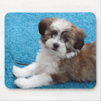 Havanese Puppy Mouse Pad