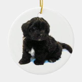 Havanese Puppy Ornament