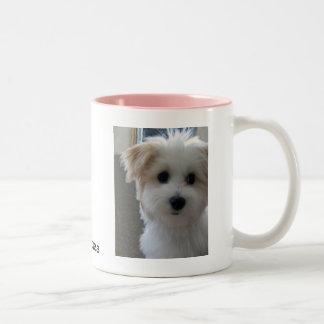 Havanese Puppy Two-Tone Coffee Mug