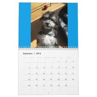 Havanese Rescue Dogs Calendar