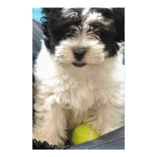 Havanese Rescue Puppy Black White Stationery
