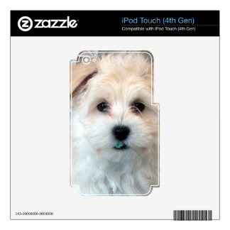 Havanese Rescue Puppy Tan funny green tooth Decal For iPod Touch 4G