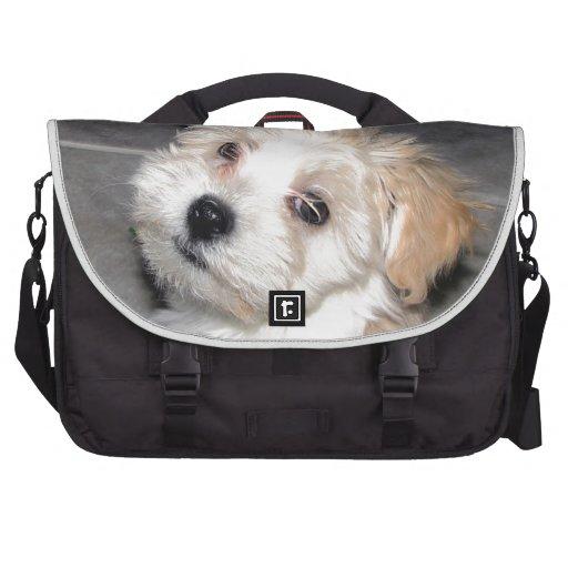Havanese Rescue puppy tan white Computer Bag
