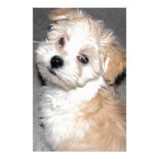 Havanese Rescue puppy tan white Stationery