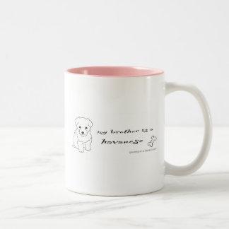 HavaneseBrotherWht Two-Tone Coffee Mug