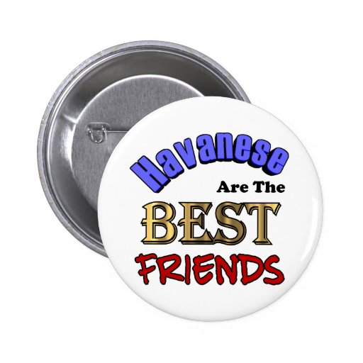 Havaneses Make The Best Friends Pinback Buttons