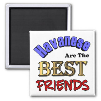 Havaneses Make The Best Friends 2 Inch Square Magnet