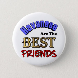 Havaneses Make The Best Friends Pinback Button