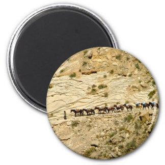 Havasu Canyon Pack Train 2 Inch Round Magnet