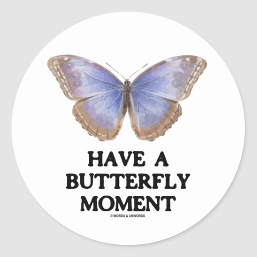 Have A Butterfly Moment (Morpho helenor Butterfly) Classic Round Sticker