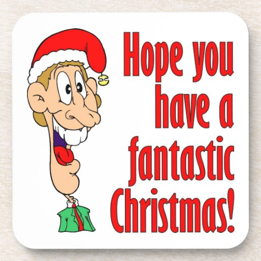 Have A Fantastic Funny Merry Christmas Nerd Coasters