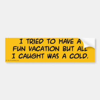 Have a Fun Vacation Bumper Sticker