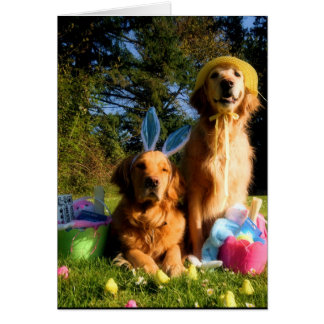 Have a Golden Easter Card