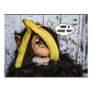 """""""Have a Great Day!"""" Gotta Love thisHappy  Chimp Postcard"""