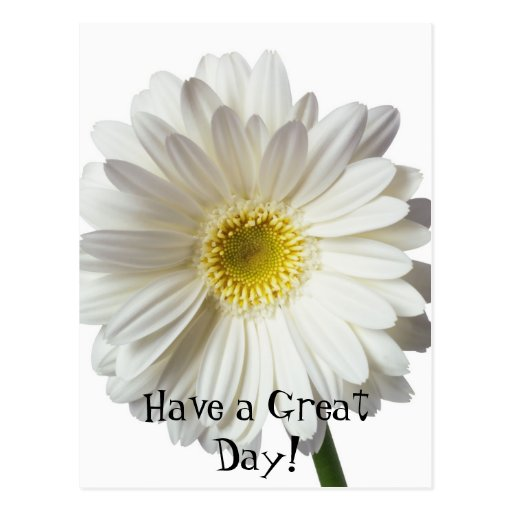 Have a Great Day! Postcard